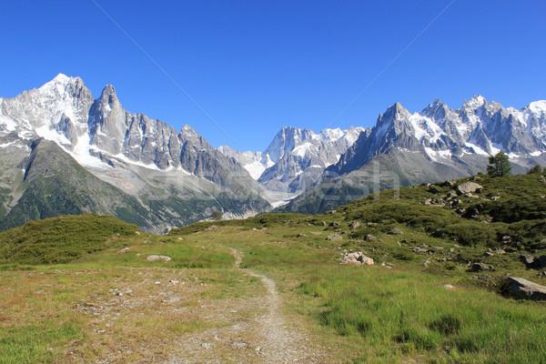 Mont-Blanc massif and small path Stock photo © Elenarts