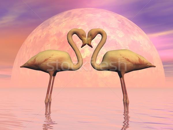 Flamingó szeretet 3d render pár szemtől szembe szerelmespár Stock fotó © Elenarts