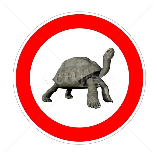 Сток-фото: черепахи · ограничение · скорости · один · внутри · символ · белый