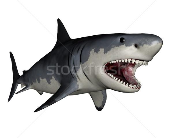 Dinosaurus 3d render witte water vis zee Stockfoto © Elenarts
