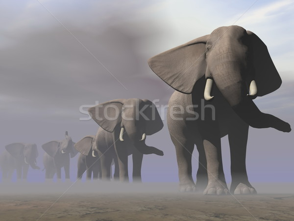 Elephants in a row - 3D render Stock photo © Elenarts