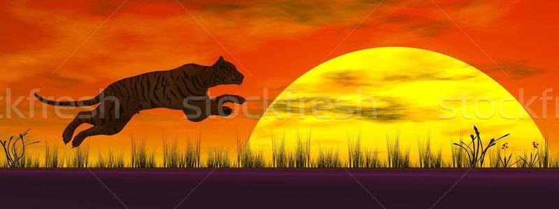 Stock photo: Tiger jumping