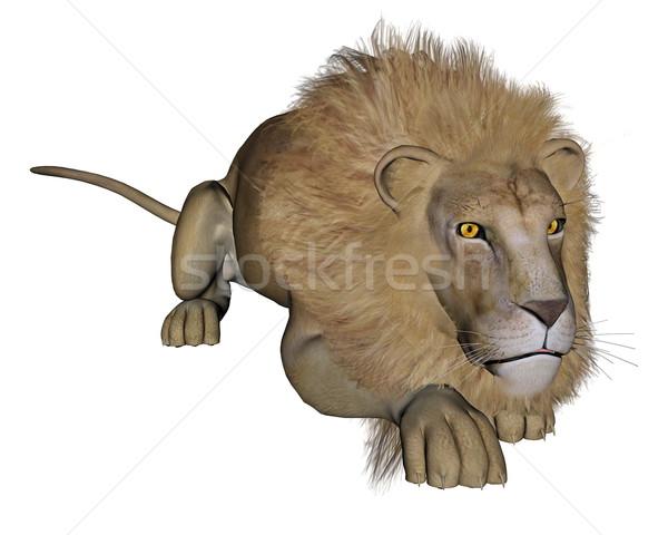 Lion hunting - 3D render Stock photo © Elenarts