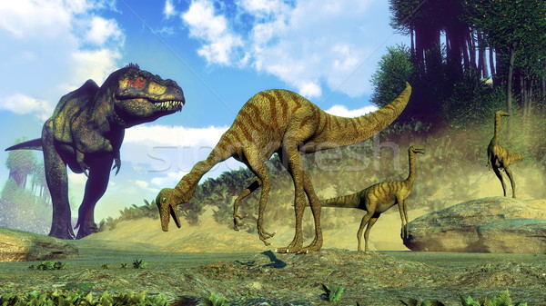 Tyrannosaurus rex surprising gallimimus dinosaurs - 3D render Stock photo © Elenarts