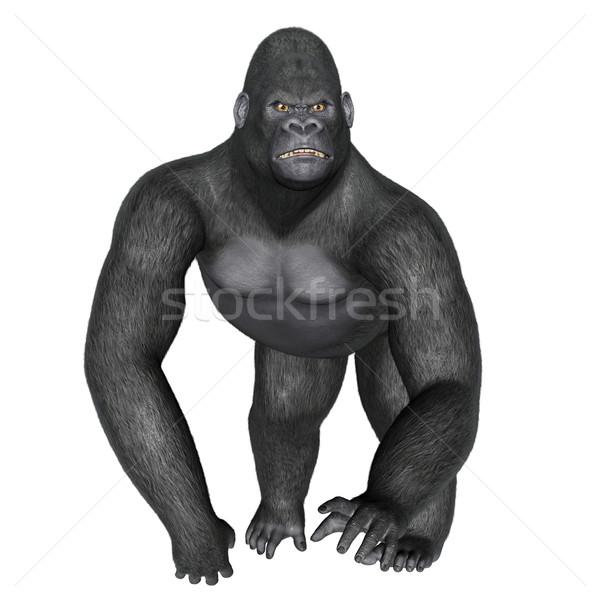 Angry gorilla walking - 3D render Stock photo © Elenarts