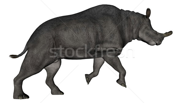 Brontotherium or megacerops dinosaur walking - 3D render Stock photo © Elenarts