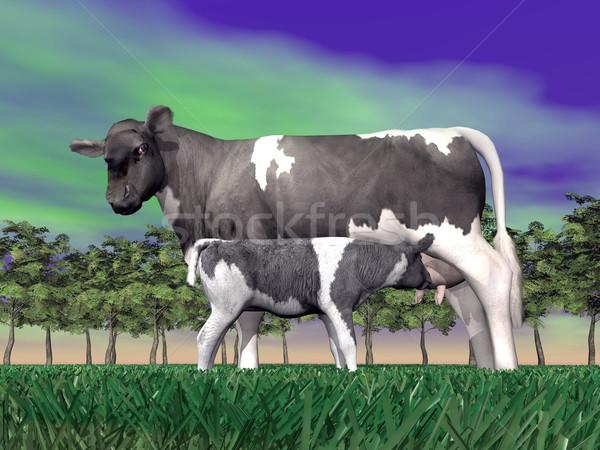 Calf suckling - 3D render Stock photo © Elenarts