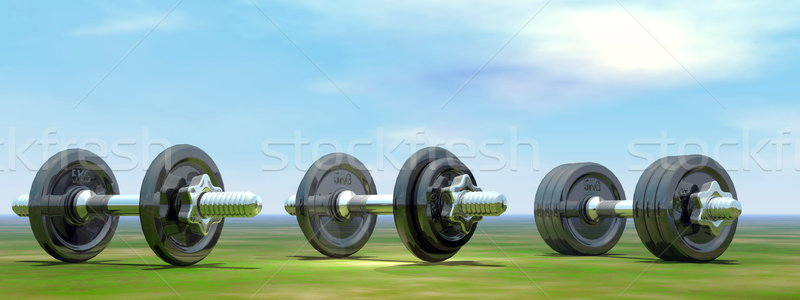 Dumbbells - 3D render Stock photo © Elenarts