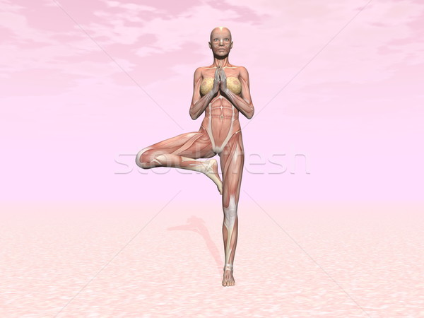 Arbre pose de yoga femme muscle visible rose Photo stock © Elenarts