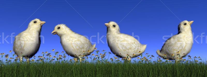 Stockfoto: Kuikens · 3d · render · vier · gras · bloemen · dag