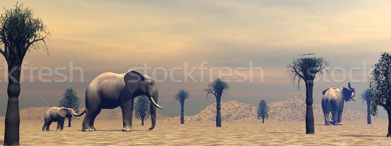 Elefántok szavanna kettő felnőtt kicsi áll Stock fotó © Elenarts