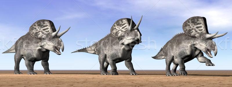 Zuniceratops dinosaurs in the desert - 3D render Stock photo © Elenarts