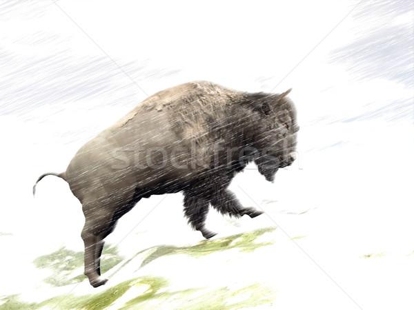 Bison in winter storm - 3D render Stock photo © Elenarts