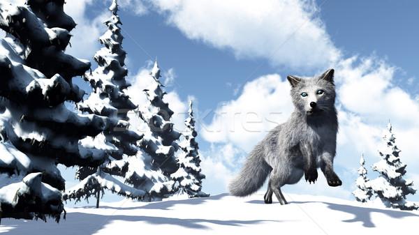 белый Fox 3d визуализации горные ель деревья Сток-фото © Elenarts