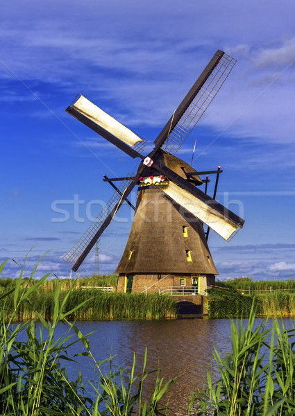 Windmill in Kinderdijk, Holland, Netherlands Stock photo © Elenarts