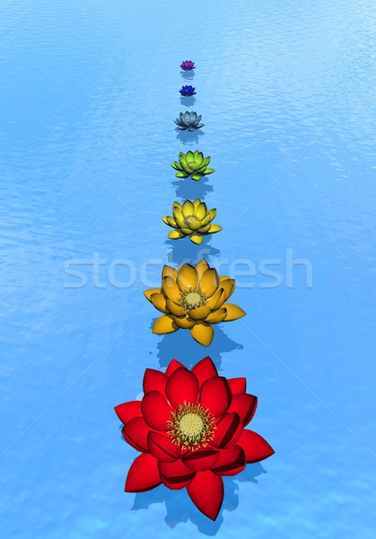 Chakra lily flowers - 3D render Stock photo © Elenarts
