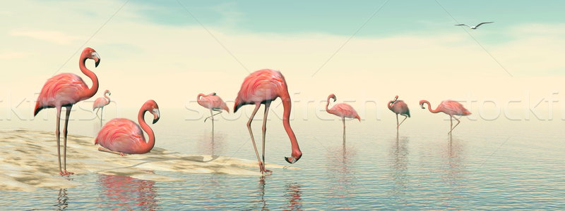 Flock of pink flamingos - 3D render Stock photo © Elenarts