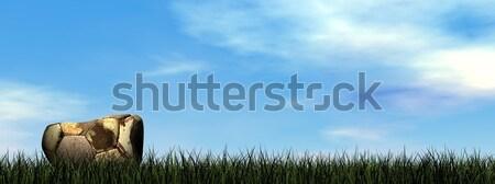 Burst Fußball 3d render schmutzigen Gras Himmel Stock foto © Elenarts
