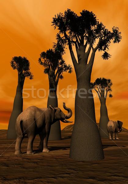 Elefántok szavanna kettő sétál égbolt fa Stock fotó © Elenarts