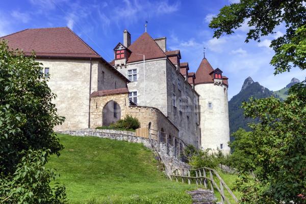 Kale İsviçre ünlü çim Bina Stok fotoğraf © Elenarts