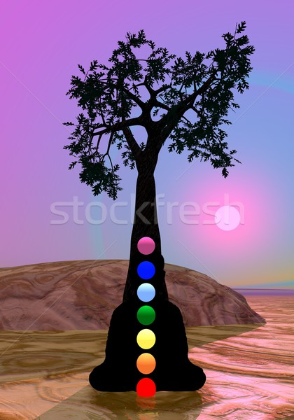 Stock photo: Chakras in meditation under a tree