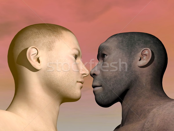 Modern human and homo erectus - 3D render Stock photo © Elenarts