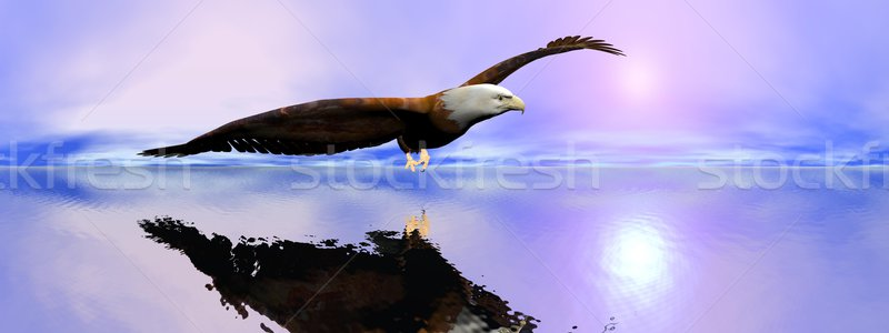 American bald eagle - 3D render Stock photo © Elenarts