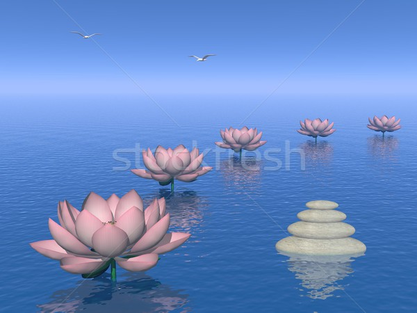 Lily flowers steps - 3D render Stock photo © Elenarts