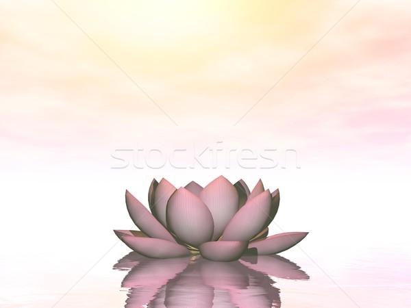Лилия 3d визуализации воды розовый цветок Сток-фото © Elenarts