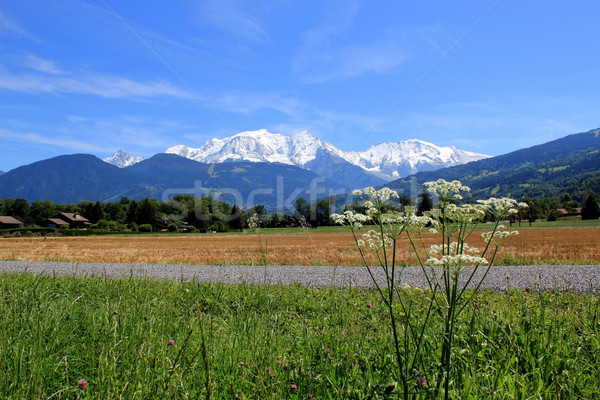 View of the Mont-Blanc massif, France Stock photo © Elenarts