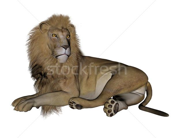 Lion resting - 3D render Stock photo © Elenarts