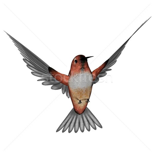 Hummingbird 3d визуализации Flying изолированный белый природы Сток-фото © Elenarts