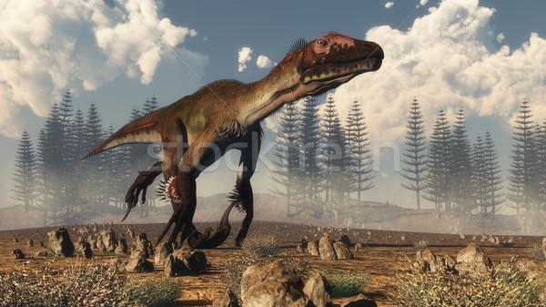 Utahraptor dinosaur in the desert - 3D render Stock photo © Elenarts