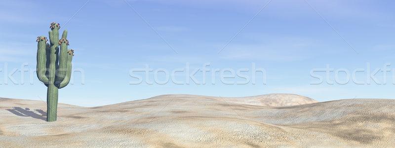Kaktus pustyni 3d niebieski dzień słońce Zdjęcia stock © Elenarts