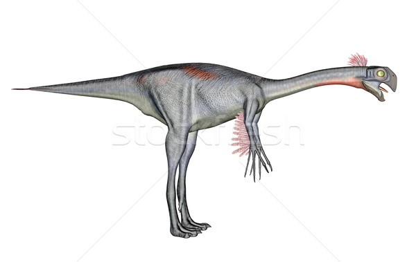 Gigantoraptor dinosaur Stock photo © Elenarts