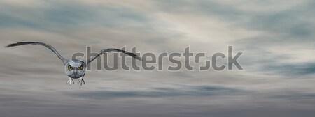 Grey owl - 3D render Stock photo © Elenarts