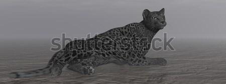 черный ягуар 3d визуализации один землю темно Сток-фото © Elenarts