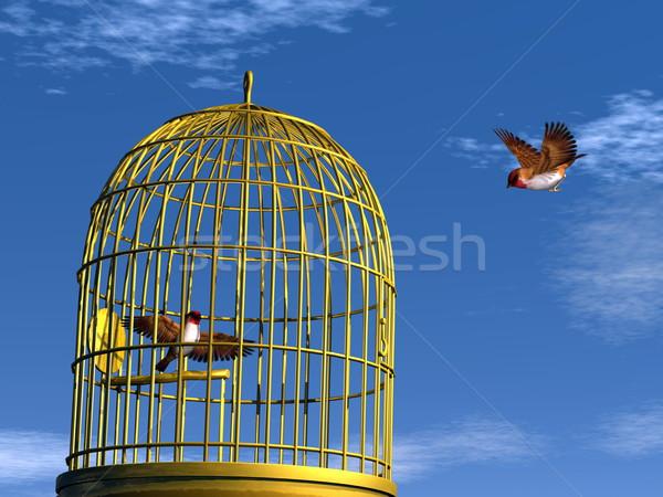 Freedom versus prison - 3D render Stock photo © Elenarts