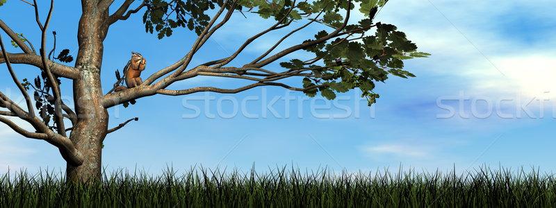 écureuil manger gland rendu 3d chêne jour Photo stock © Elenarts