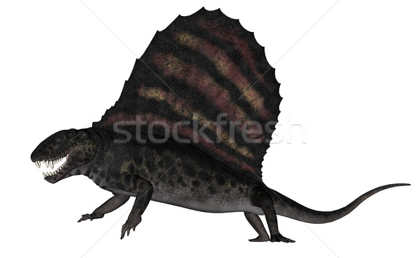 Dimetrodon dinosaur - 3D render Stock photo © Elenarts