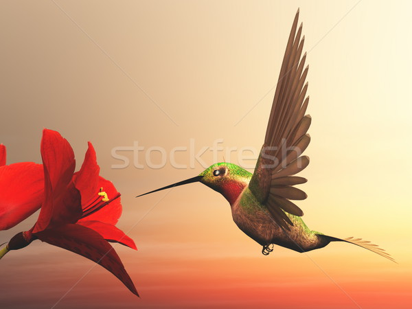 Beija-flor 3d render voador vermelho margaridas nublado Foto stock © Elenarts