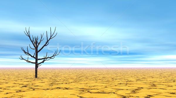 Toter Baum Wüste allein trocken schönen blauer Himmel Stock foto © Elenarts