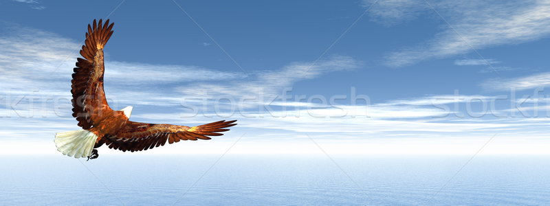 Eagle flying - 3D render Stock photo © Elenarts