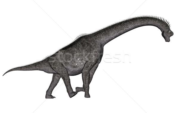 Brachiosaurus dinosaur Stock photo © Elenarts