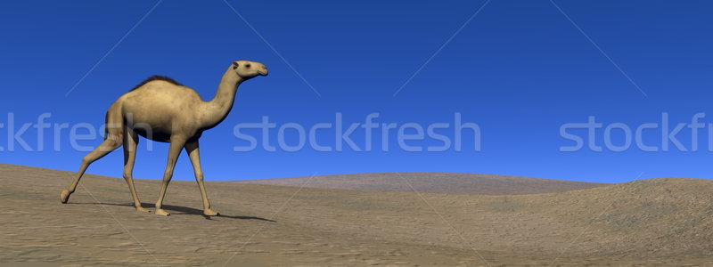 Camelo caminhada 3d render céu paisagem Foto stock © Elenarts