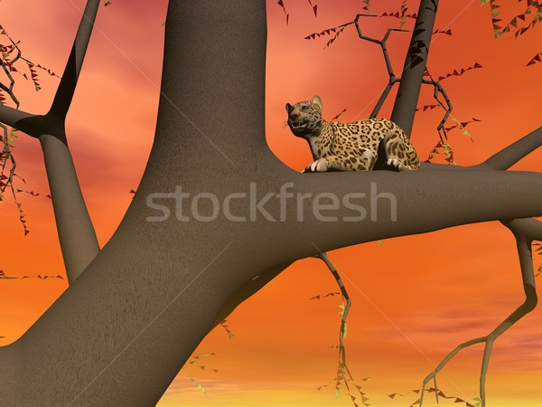 Panther on a tree Stock photo © Elenarts