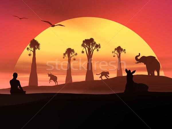 Meditazione fauna selvatica tramonto umani natura Foto d'archivio © Elenarts