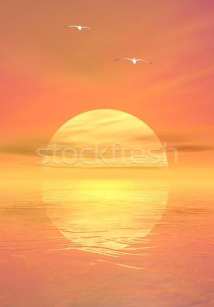 Mewy wygaśnięcia duży żółty słońce Zdjęcia stock © Elenarts