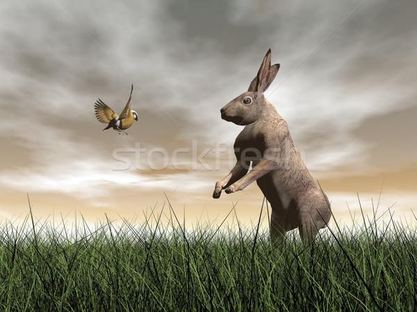 заяц птица говорить 3d визуализации один говорить Сток-фото © Elenarts