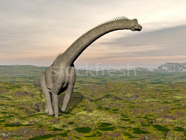 Brachiosaurus dinosaur walking - 3D render Stock photo © Elenarts
